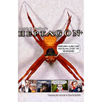 heptagon-full.png