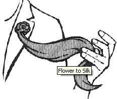 Flower to Silk -  Norm Nielsen