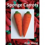 Sponge Carrots - Alan Wong