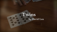 Twins by David Luu video DOWNLOAD