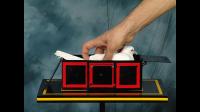 Surprising Dove Box by Tora Magic - Trick