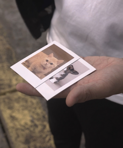 Skymember Presents: Project Polaroid  Add-On Kit (Pet lover)