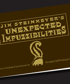 Unexpected  Impuzzibilities by Jim Steinmeyer - Book