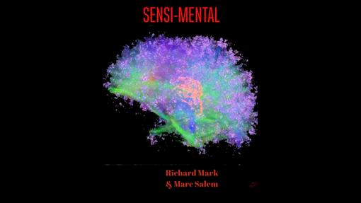 Sensi Mental  by Marc Salem & Richard Mark - Book