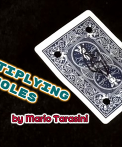 Multiplying Holes by Mario Tarasini video DOWNLOAD