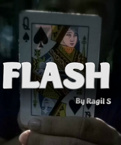 FLASH By Ragil Septia video DOWNLOAD