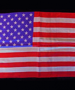"Rice Silk 12"" x 18"" (American Flag) by Silk King Studios - Trick"